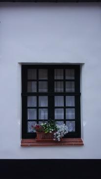 Pretty windows, part 4.