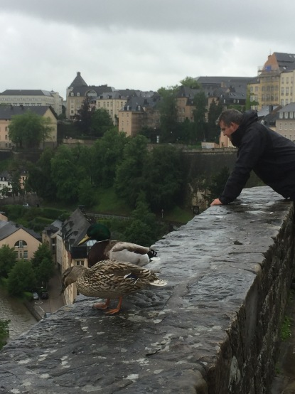 Luke and ducks share a view of Luxembourg city.