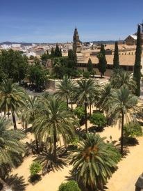 The orange grove in front of the Alcazar.