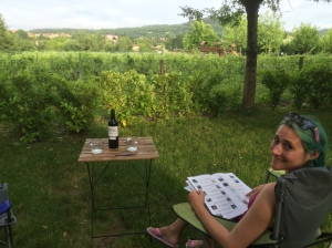 Camping in France, vineyard in view. Not bad.