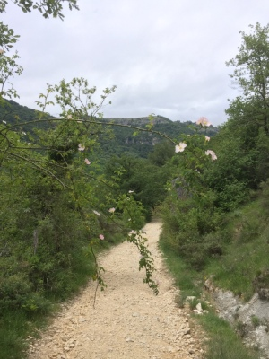The beginning of our hike in Urrederra.