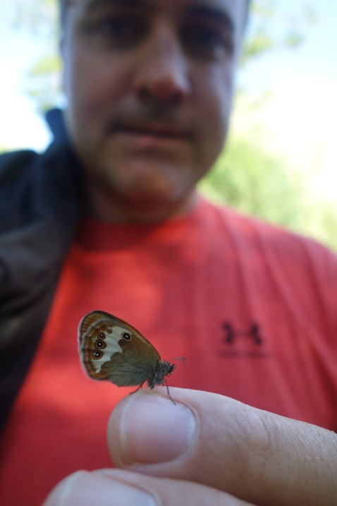 Luke rescued a butterfly from the hot car, but it didn't want to leave his finger.