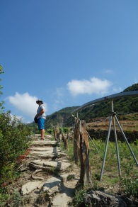 We went for a nice long hike from one village to another (Manerola to Consiglia)