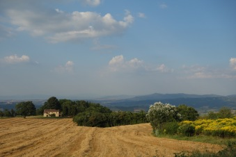 Tuscan countryside. It's exactly what you'd imagine, right?