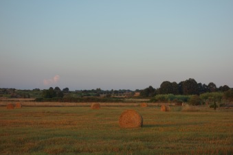 Golden hour on haybales at our farmstay