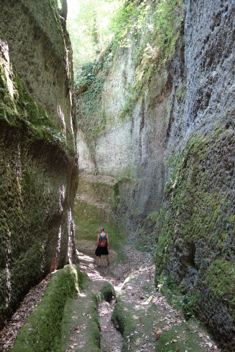 A short drive from our farmstay were these man-made canyons, which lead to the town of Pitigliano. These were dug out by the Etruscans THREE THOUSAND years ago. Probably for religious reasons (but archeologists always say things were for religious reasons, so.)