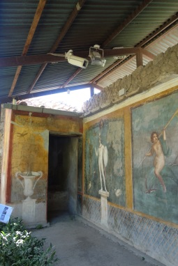 Very well preserved paintings in someone's house in Herculaneum.
