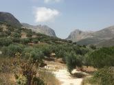 Sierra Nevada mountains.
