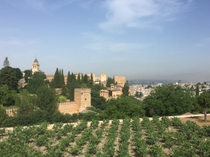 A view of the Alhambra from the Generalife.