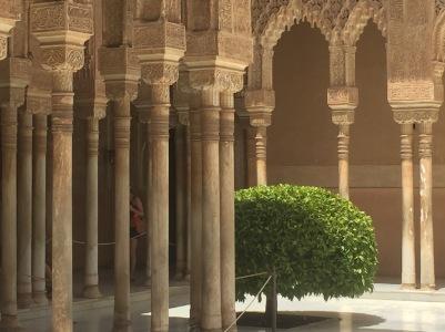 Beautiful columns inside the palace.