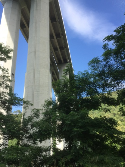 This is once we exited the freeway and drove below it. All the bridges were this high.