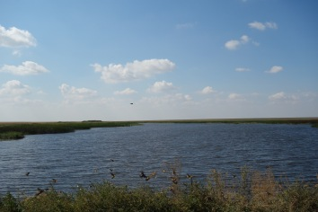 There is, contrary to popular belief, water in Kazakhstan. Right in the middle of the steppe.