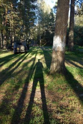 How creepy is my shadow