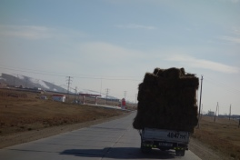 Hay on the road.
