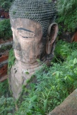 Buddha from the top