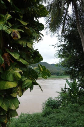 A peak at the Mekong