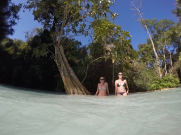 Taking a break in another swimming hole, sitting on a root
