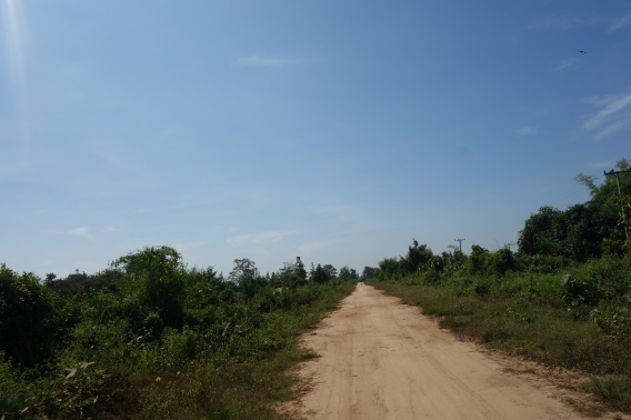 We did get to see the quieter side of Don Khong by driving around it's one road, in a circle