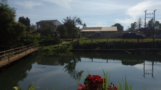 Yet another fish farm pond restaurant (a view across the pond to Luke and our car)