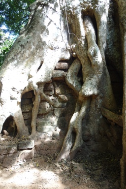 Somewhere within Angkor Thom, the walled sacred city that we were exploring this day,
